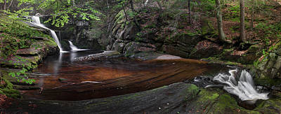 Enders State Forest Panorama Art Print