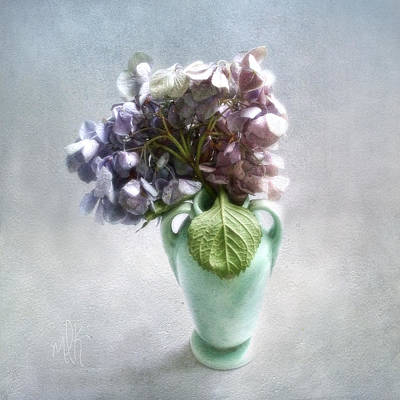 Photograph - Endless Summer Hydrangea Still Life No 2 by Louise Kumpf