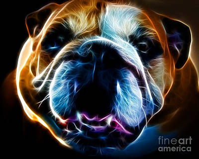 English Bull Dog Photograph - English Bulldog - Electric by Wingsdomain Art and Photography