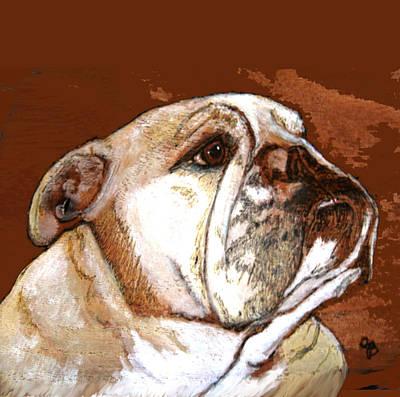 English Bulldog  Art Print by Jeanie Beline