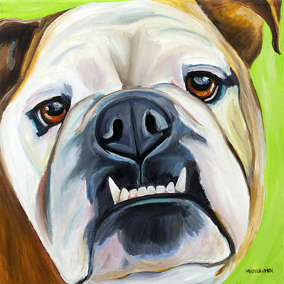 English Bulldog Painting - English Bulldog by Melissa Smith