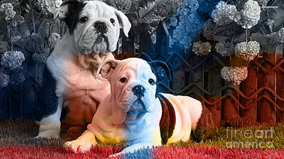 Bulldog Mixed Media - English Bulldog Puppy Painting by Marvin Blaine