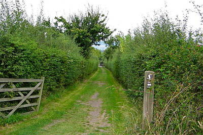 Photograph - English Footpath by Denise Mazzocco
