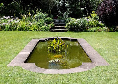 Photograph - English Garden Pond by Guy Pettingell