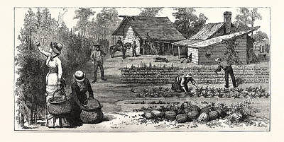 English Garden. Scenes Rugby, The English Colony Tennessee Art Print by American School