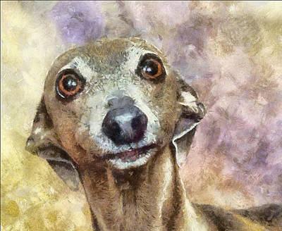 Art Print featuring the painting English Hound Hunting Dog by Georgi Dimitrov