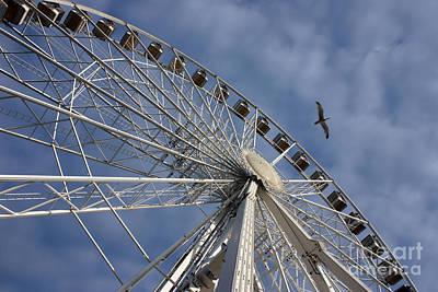 Photograph - English Riviera Wheel Torquay  by Terri Waters