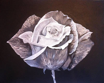2d Painting - English Rose by Faye Symons