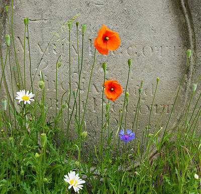 Photograph - English Tombstone by Jenny Setchell