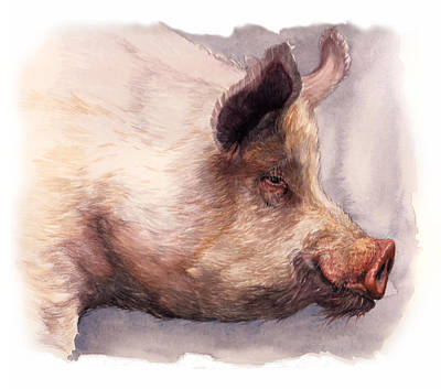 Piggies Painting - English White by Lesly Holliday