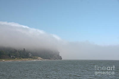 Photograph - Engulfed In Fog by Cheryl Baxter