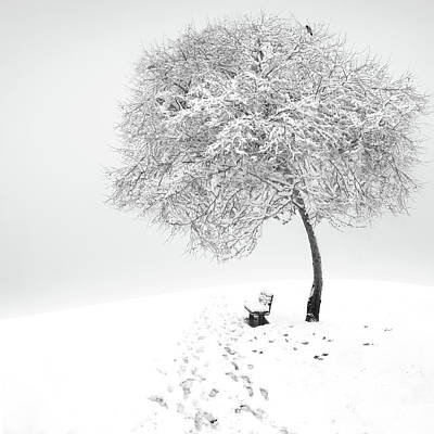 Frost Wall Art - Photograph - Enjoy The Silence by Sherry Akrami