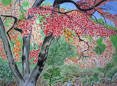 Painting - Enjoying Lost Maples by Vera  Smith