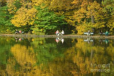 Photograph - Enjoying The Autumn Sun by Rudi Prott