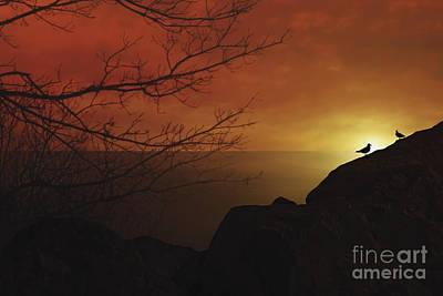 Enjoying The Sunset Art Print by Tom York Images