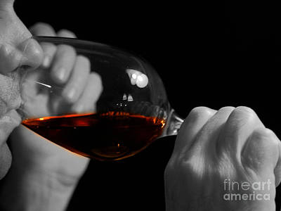 Winetasting Photograph - Enjoying Wine by Patricia Hofmeester