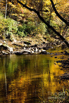 Photograph - Eno River In The Fall 1 by Sandra Clark