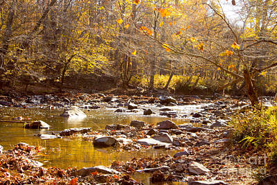 Photograph - Eno River In  The Fall 4 by Sandra Clark