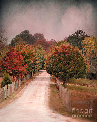 Autumn Scene Photograph - Enter Fall by Jai Johnson