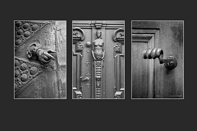 Photograph - Enter Triptych Image Art by Jo Ann Tomaselli