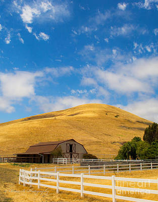 Photograph - Entering Napa Valley 2 by Rima Biswas