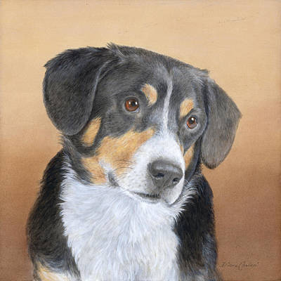 Switzerland Painting - Entlebucher Mountain Dog by Diane Cardaci