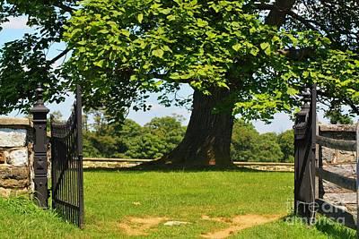 Entrance To Antietam's Mumma Cemetery Art Print