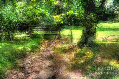 Photograph - Gates To Heaven by Doc Braham