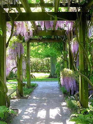 Photograph - Entranceway To Fantasyland by Susan Maxwell Schmidt