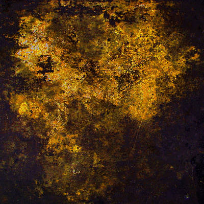 Photograph - Entropy Gold by Stephanie Grant