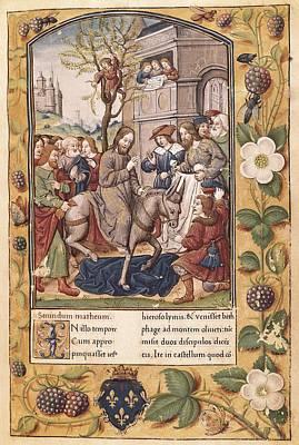 Miniature Donkey Photograph - Entry Of Christ Into Jerusalem. Page by Everett