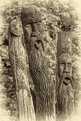 Tolkien Photograph - Ents Sepia by Steve Harrington