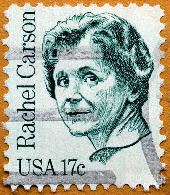 Photograph - Environmentalist Rachel Carson Postage Stamp by Phil Cardamone