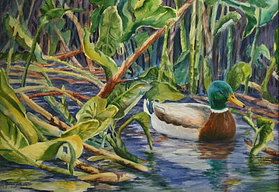 Environmentally Sound - Mallard Duck Art Print