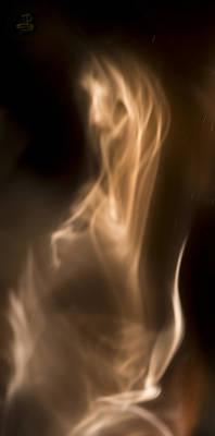 Photograph - Prancing Horse by Steven Poulton
