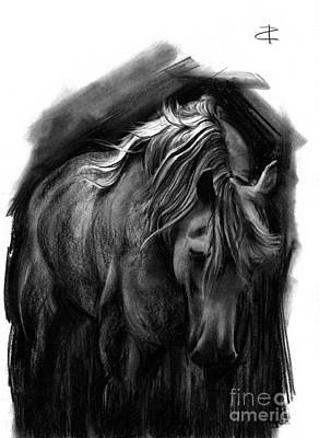 Drawing - Equine 1 by Paul Davenport