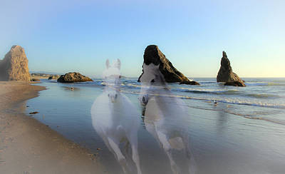 Photograph - Equine Beach II by Athena Mckinzie
