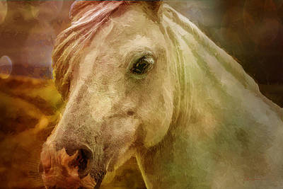 Manipulation Photograph - Equine Fantasy by EricaMaxine  Price
