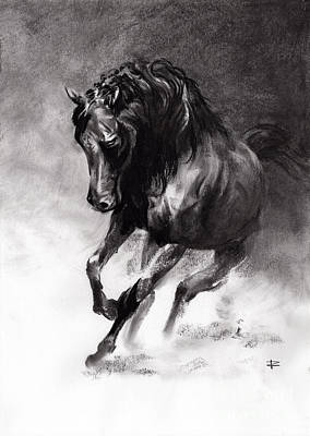 Drawing - Equine by Paul Davenport