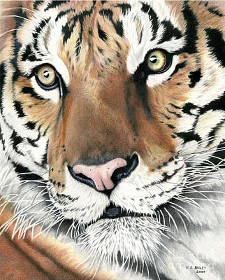 Drawing - Eric's Legacy by Helen Bailey