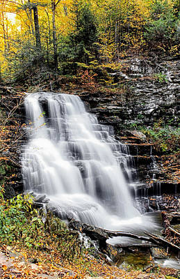 Art Print featuring the photograph Erie Falls by David Stine