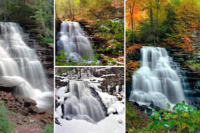 Photograph - Erie Falls In Every Season by Gene Walls