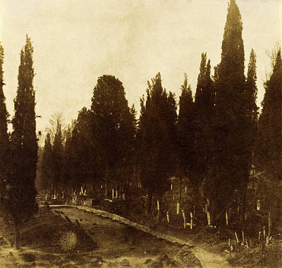 Platinum Drawing - Ernest De Caranza, Turkey Scutari Cemetery by Quint Lox