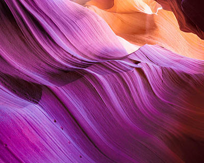 Photograph - Magenta Waves by Brad Brizek