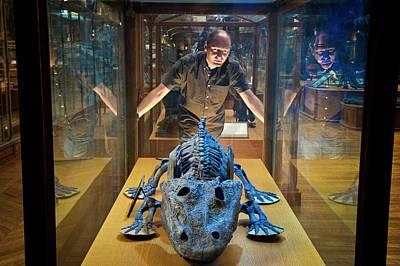 Aquatic Display Photograph - Eryops Skeleton by Philippe Psaila