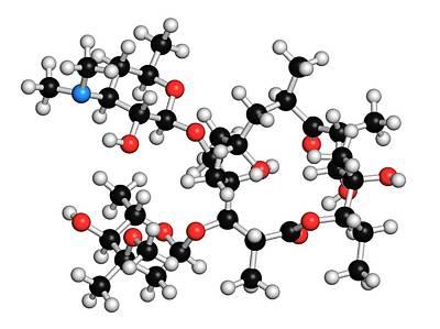 Molecule Photograph - Erythromycin Antibiotic Molecule by Molekuul