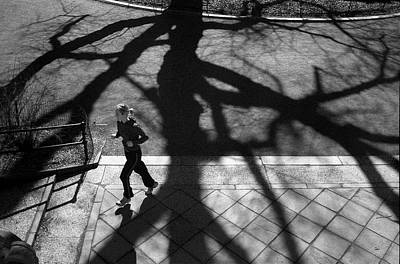 Photograph - Escape From The Shadows by Cornelis Verwaal