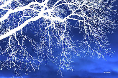 Fantasy Tree Art Mixed Media - Escaping The Blues Weeping Tree Art by Christina Rollo