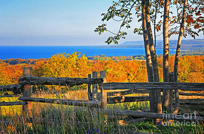 Escarpment Fall Colors Art Print by Charline Xia
