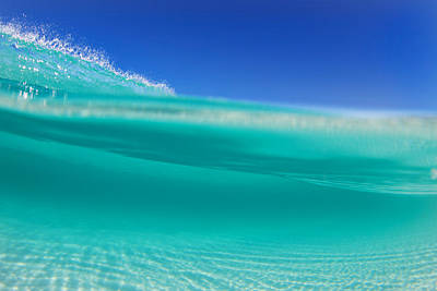 Underwater Photograph - Esperance by Love and Water Photography